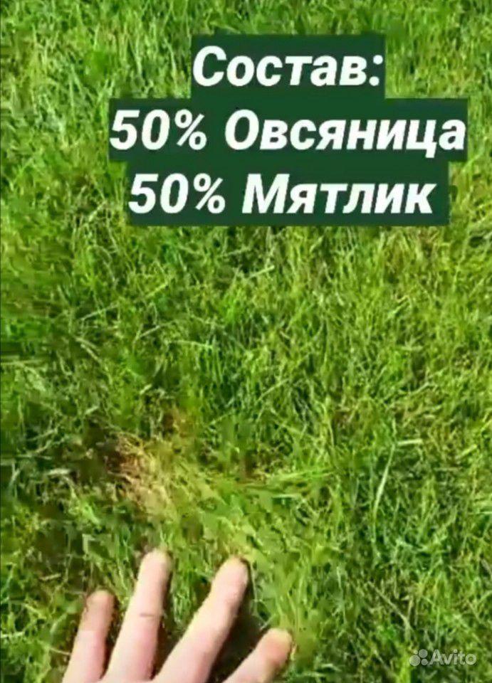 Рулонный газон купить на Зозу.ру - фотография № 5