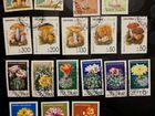 Почтовые марки: флора (растения и грибы)