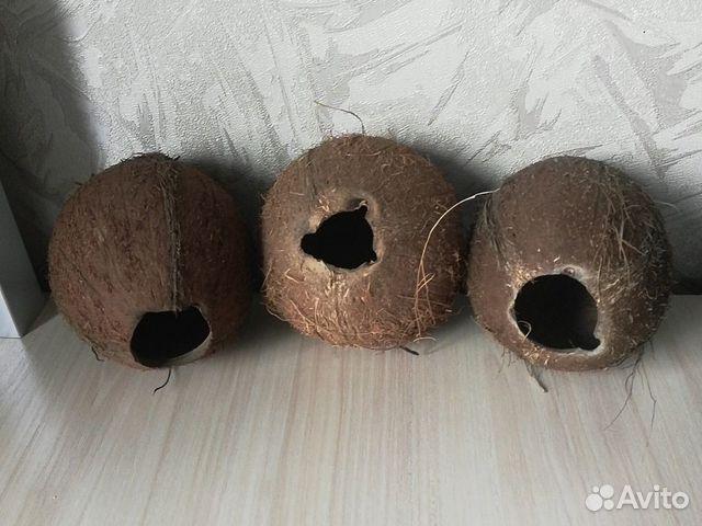 Декор-кокос натуральный  89538576901 купить 1
