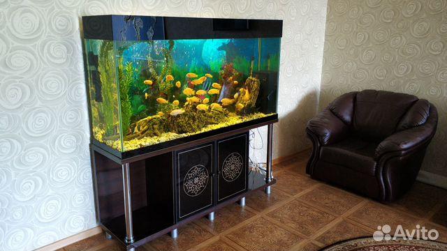 Аквариум с системой и рыбками  купить 2