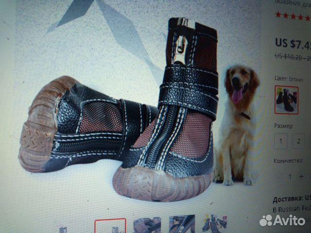 Ботинки для лабрадора 89515899554 купить 2