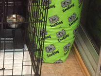 Корм для собак Zooring peppy лосось