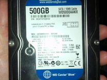 WD 500 GB WD Blue — Товары для компьютера в Перми